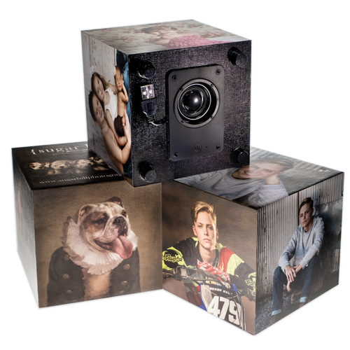 Three dimensional speakers with canvas art prints